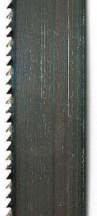 Scheppach Pilový pás 12/0,65/2360, 10 Z/Z pro Basato/Basa 3